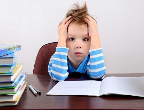 Учење од дома – предизвик со кој се соочуваме